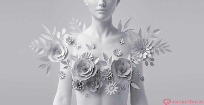 人工乳房 パットナチュラルブレスト 乳がん 再建手術 ブラ